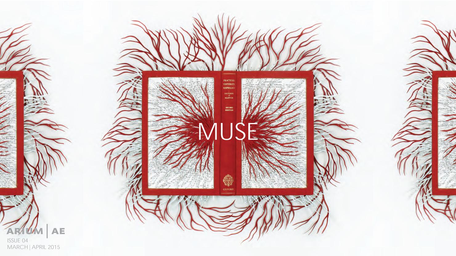 muse04